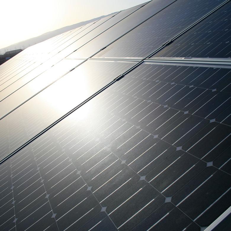 Cleaning Solar Panels Sydney